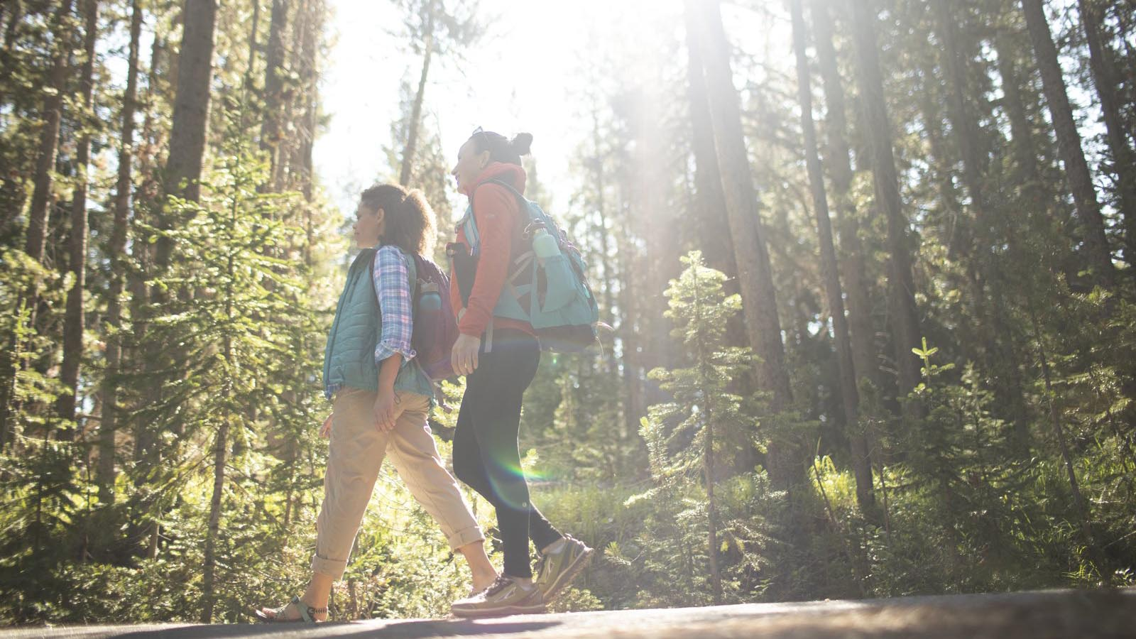 Two women hiking in the forest.