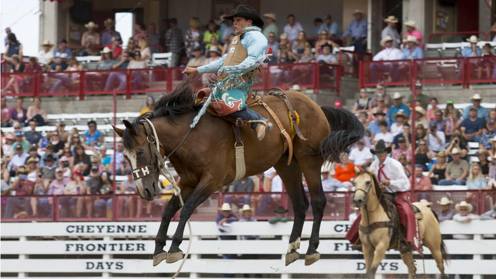 bronc rider in front of crowd