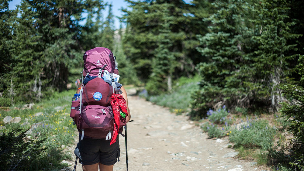 Backpacker on the Continental Divide Trail