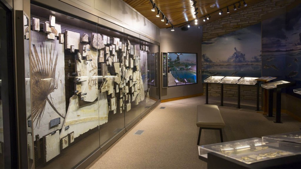 exhibit in Fossil Butte National Monument