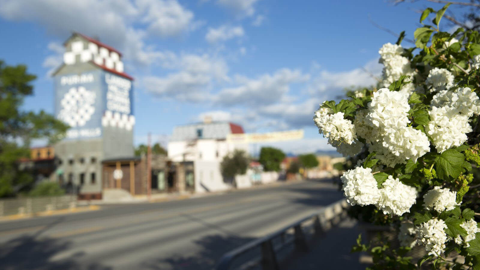 downtown Lander street with flowers