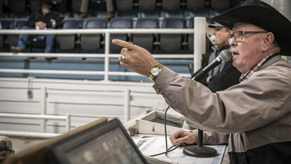 Announcer pointing at Livestock Sale Barn