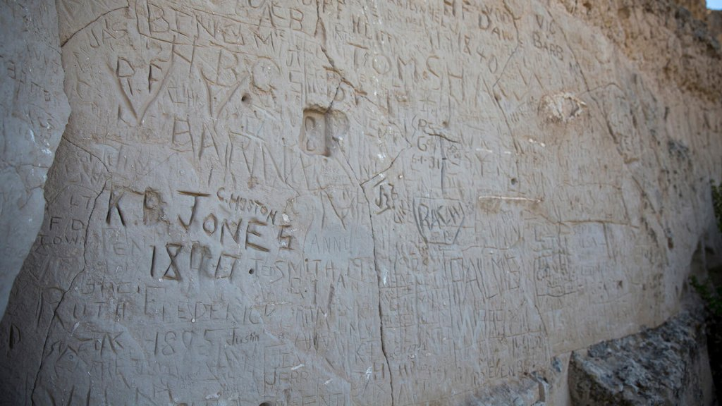 names carved into cliffside