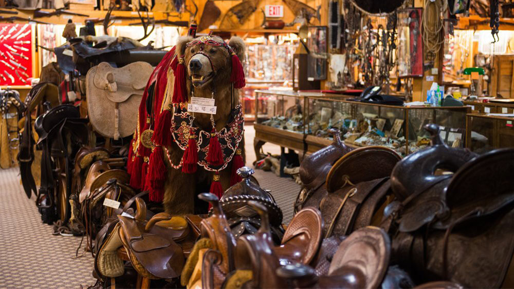 display of saddles in store
