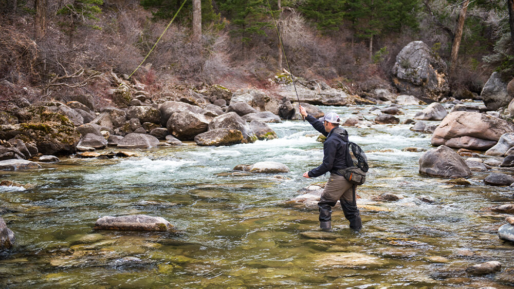 Fly fisherman wading in river