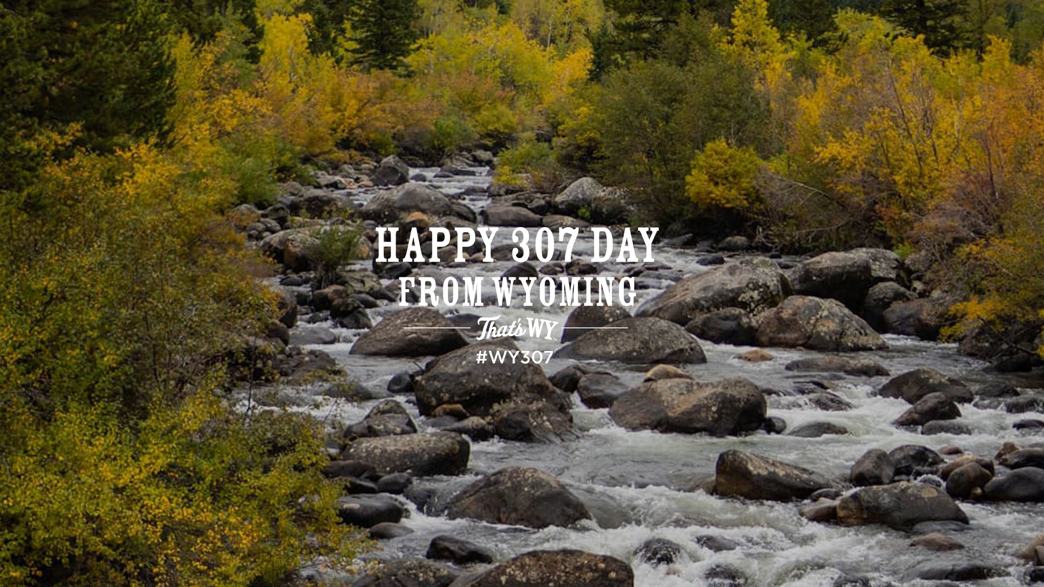 Happy 307 Day From Wyoming, That's WY #WY307