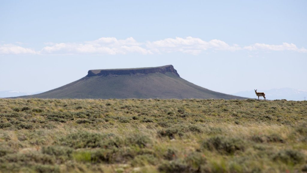A lone antelope standing near Pilot Butte in Sweetwater County.