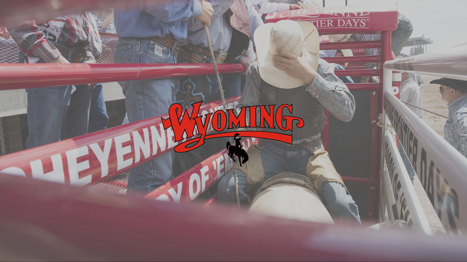 Wyoming Red logo: Cowboy saddled up in chute at Frontier Days Rodeo in Cheyenne, Wyoming.