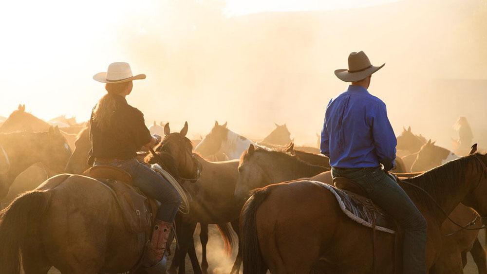 Horseback riders on horseback