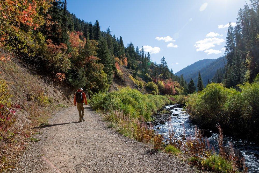 Hiker on a trail near a river.