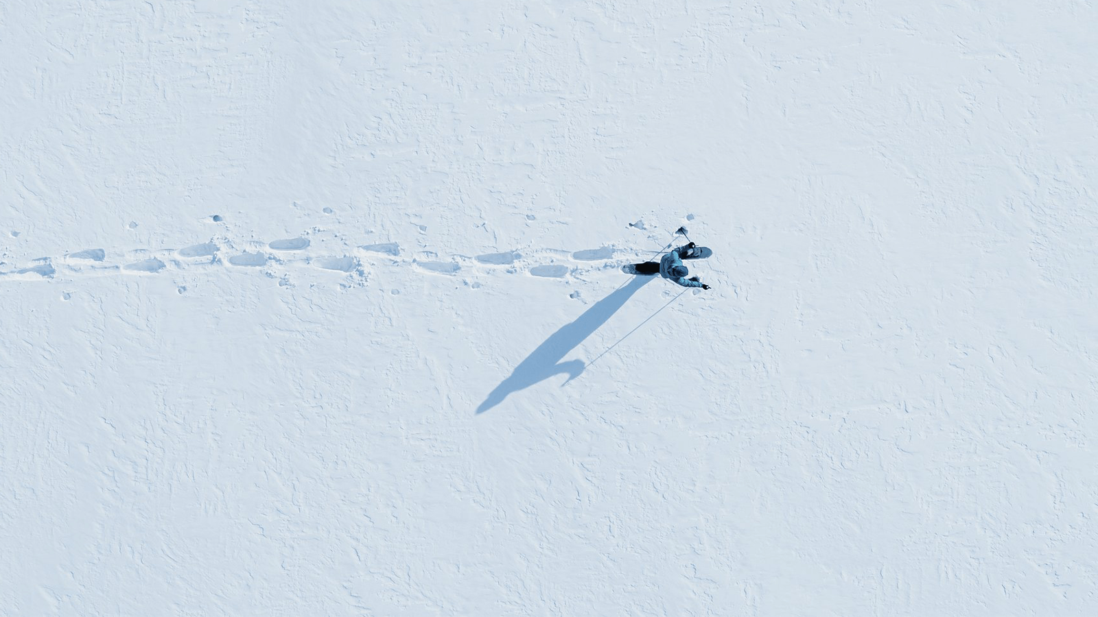 snowshoe crossing snow