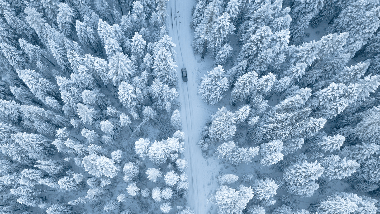 aerial view of car on snowy road
