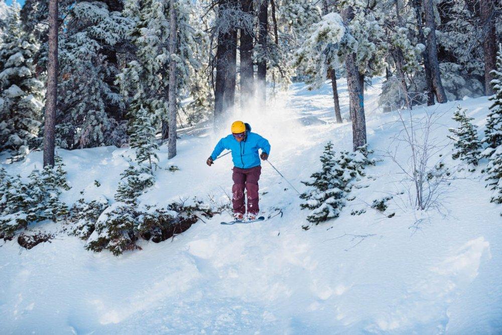 Skier going down a trail through trees.
